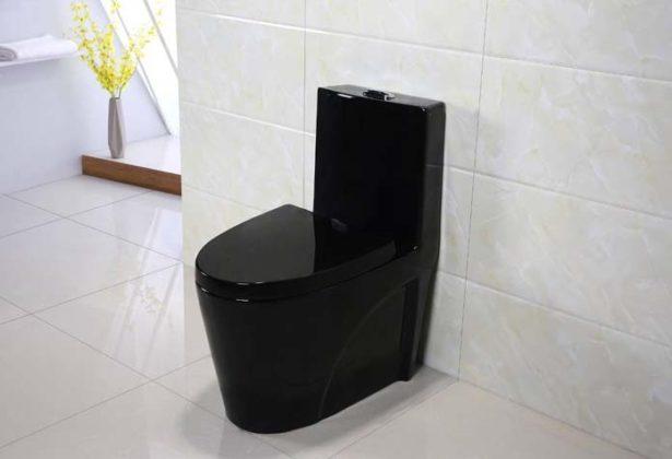 Banheiro preto e branco com vaso preto