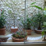 Jardim de inverno pequeno