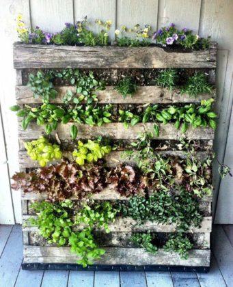 Jardim vertical com paletes