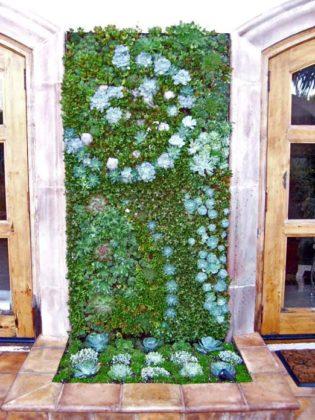 Jardim vertical com plantas suculentas