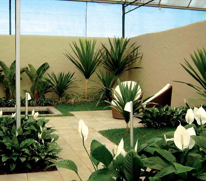 Plantas para jardim externo