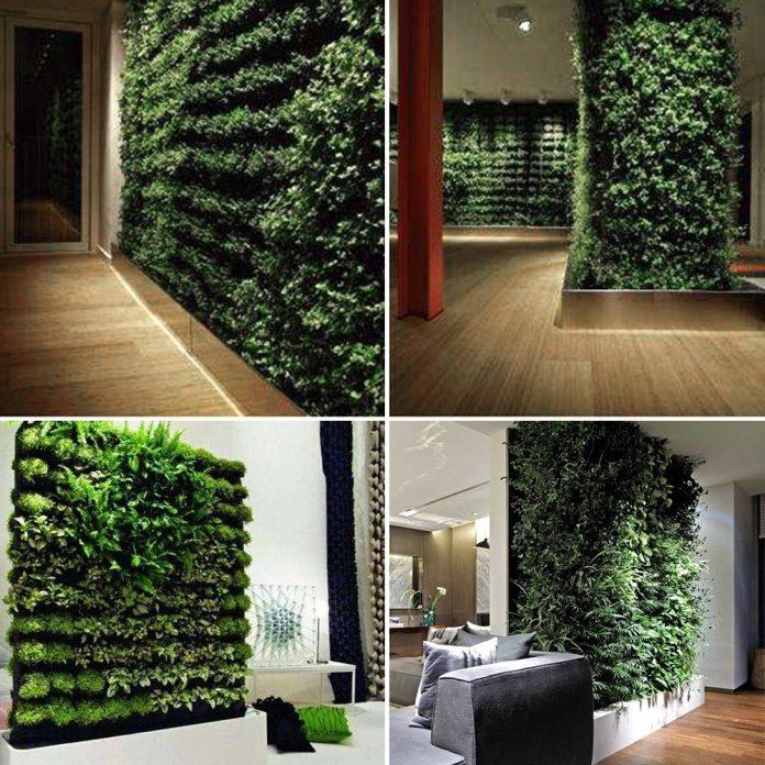 uso em paredes, trazendo também esse contato com a natureza, podem formar as paredes do seu jardim de inverno é o deixar ainda mais atraente