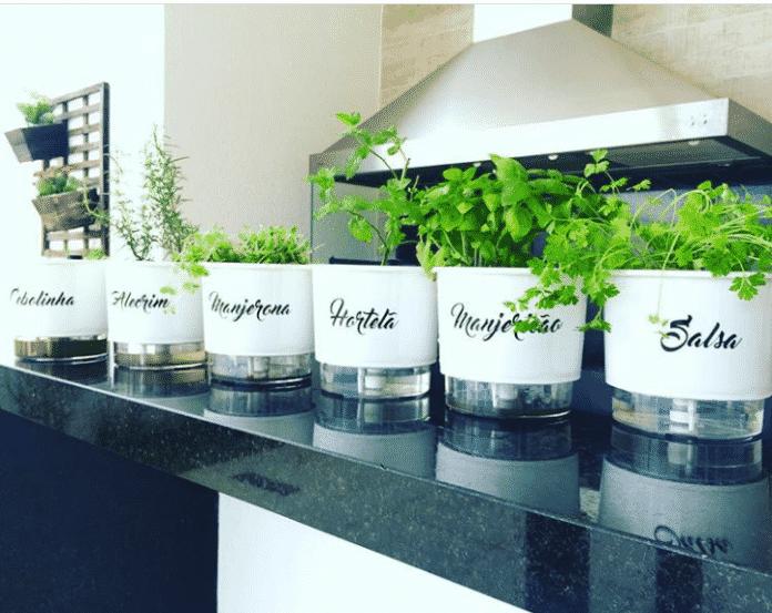 hortas para se plantar em casa