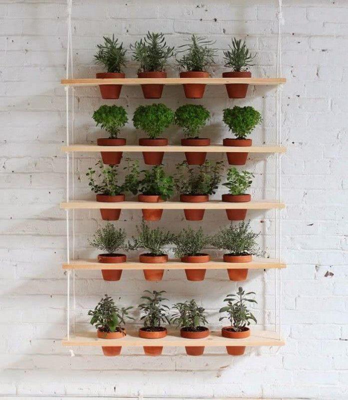 Prateleira para Plantas: Modelos e Dicas para se Inspirar